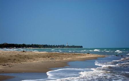 Casuarina Beach Image