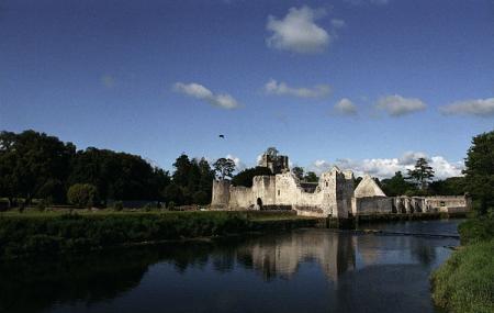 Desmond Castle Image