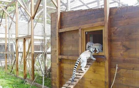 Lutsk Zoo Image