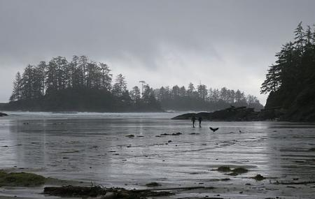 Pacific Rim National Park Reserve Of Canada Image