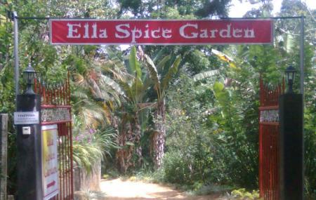 Ella Spice Garden Image