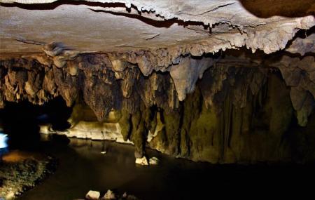 Waipu Caves Image