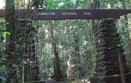 Lamington National Park Image
