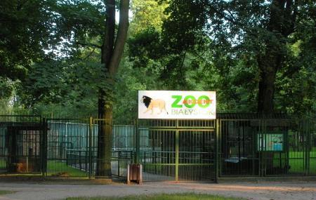 Akcent Zoo Image