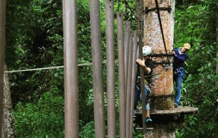 Baturaden Adventure Forest Image