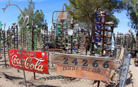 Elmer's Bottle Tree Ranch Image