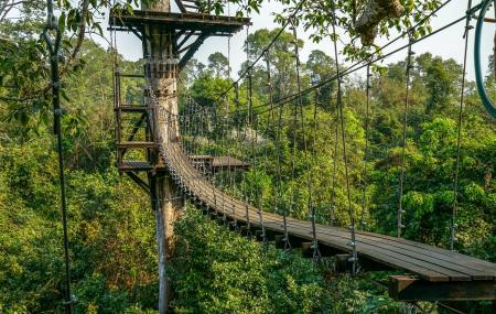 Angkor Zipline Image