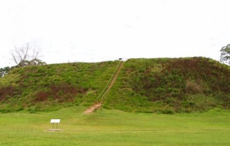 Kolomoki Mounds Historic Park Image
