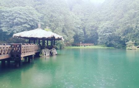 Alishan National Scenic Area Image