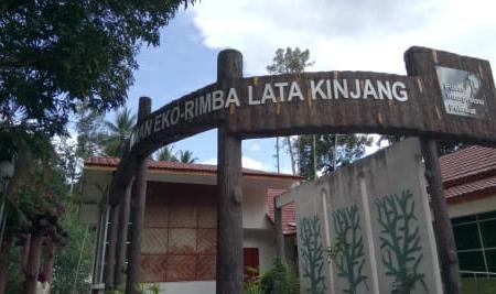 Lata Kinjang Image
