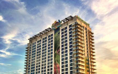 Margaritaville Resort Casino Image