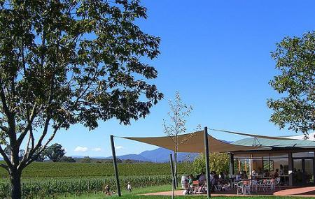 Oakridge Wines Image