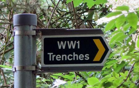 Berkhamsted W W 1 Trenches Image