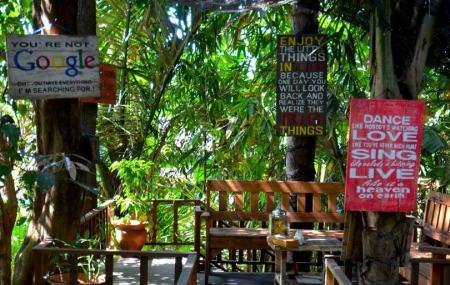 Merta Harum Agro Coffee Plantation Image