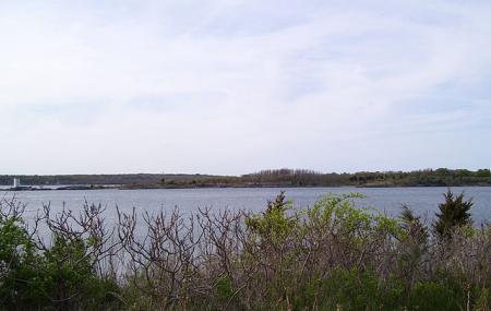 Dutch Island Image