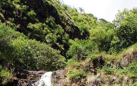 Waimea Falls Image