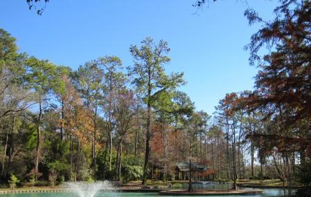 Mercer Botanic Gardens Image