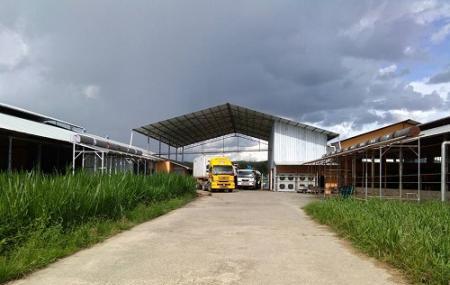 Ladang Datuk Yap Yun Fook, Keningau Image