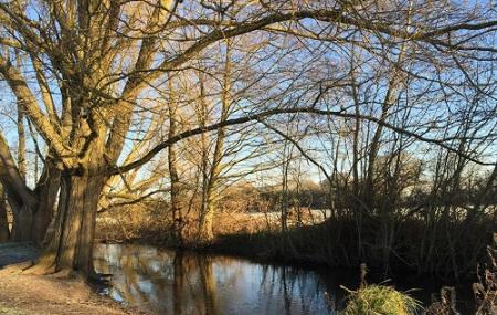 Bassett's Mead Country Park Image