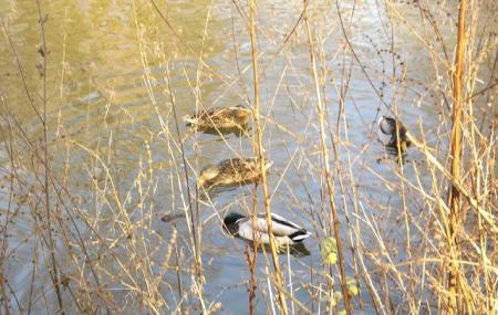 Vogelpark Bochum-wattenscheid Image
