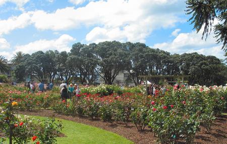 Parnell Rose Garden Image