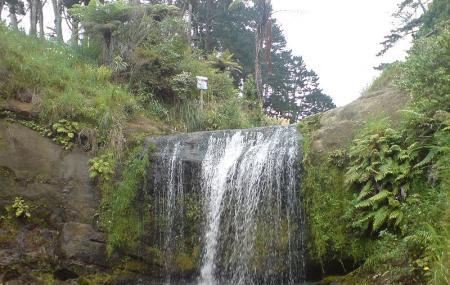 Oakley Creek Waterfall Image