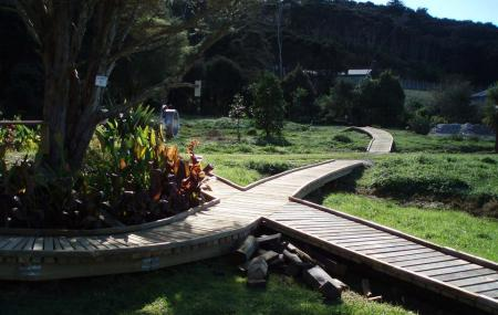 Whitianga Mountainbike Park Image