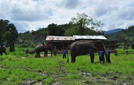 Baanchang Elephant's Paradise Image