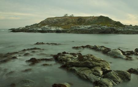 Monumento Natural Isla Cachagua Image