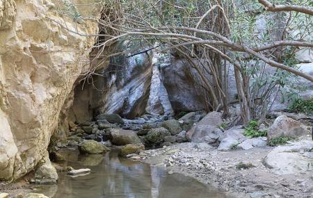 Avakas Gorge Image