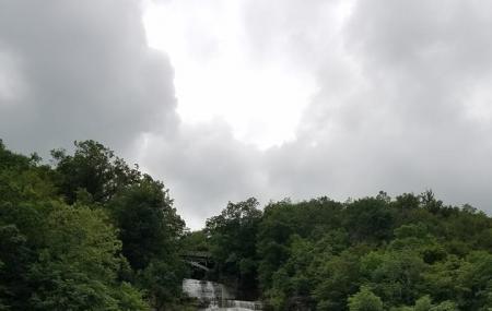 Shequaga Falls Park Image