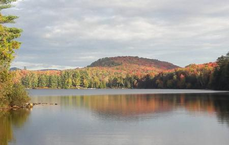 Groton State Forest Image