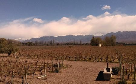 Cheval Des Andes Image