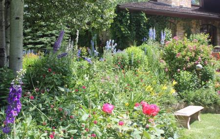 Sawtooth Botanical Garden Image