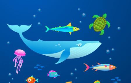 Porec Aquarium Image