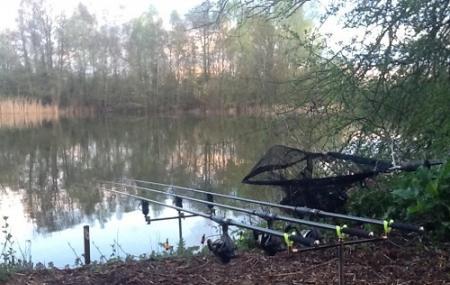 Strikers Angling Lake Image