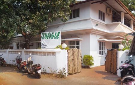 Jungle Hostel Image