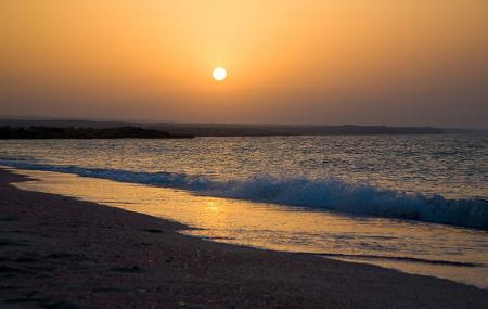 Ras Al Hadd Sur Image