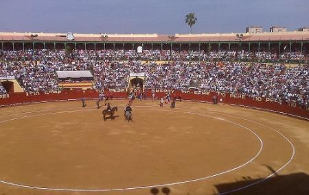 Feria Del Caballo Image