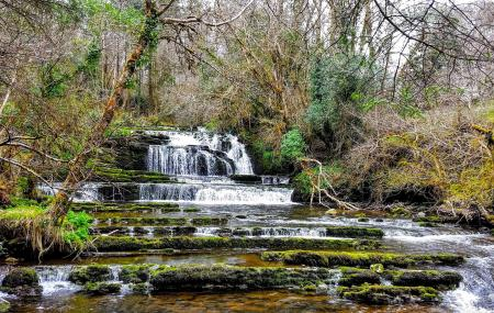 Fowley's Falls, Rossinver, Leitrim Image