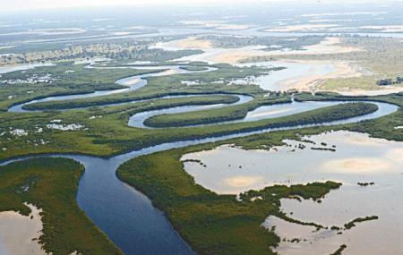Delta Du Saloum National Park Image