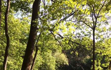 Demarest Kill County Park Image