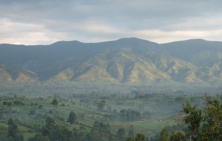 Rwenzori Moutains National Park Image