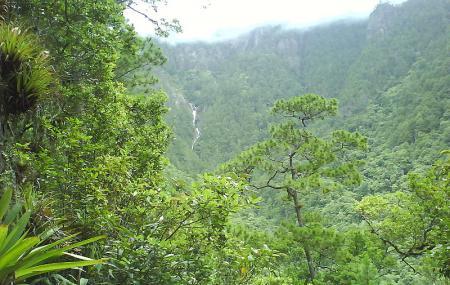 Celaque National Park Image