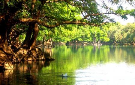 Lago De Camecuaro National Park Image