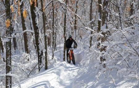 Elm Creek Singletrack Trail Image