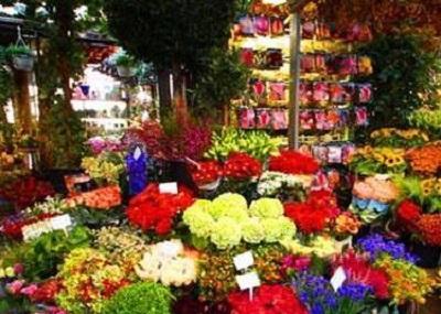 Stins Flower Market Image