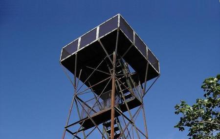 Mount Davis Observation Tower Image