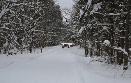 Winona State Forest Image