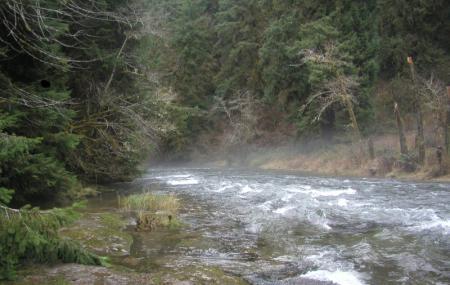 Drift Creek Wilderness Image